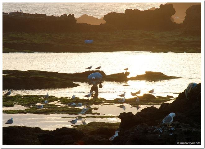 pescadors Essaouira