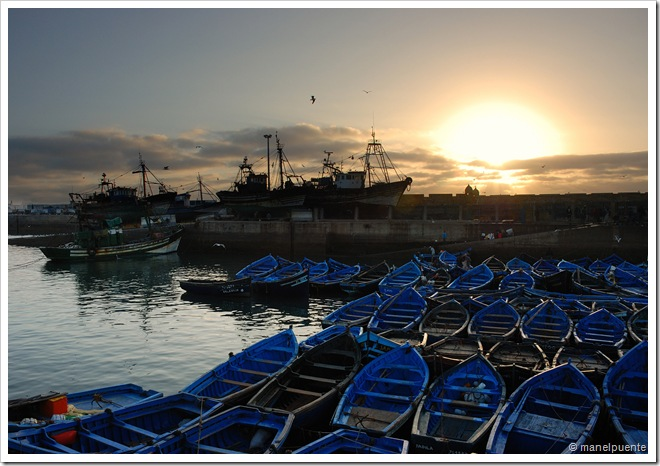 Port Essaouira vespre