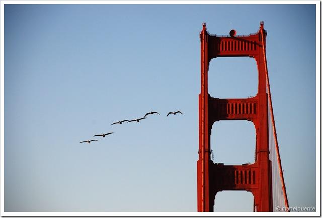 Golden Gate_04