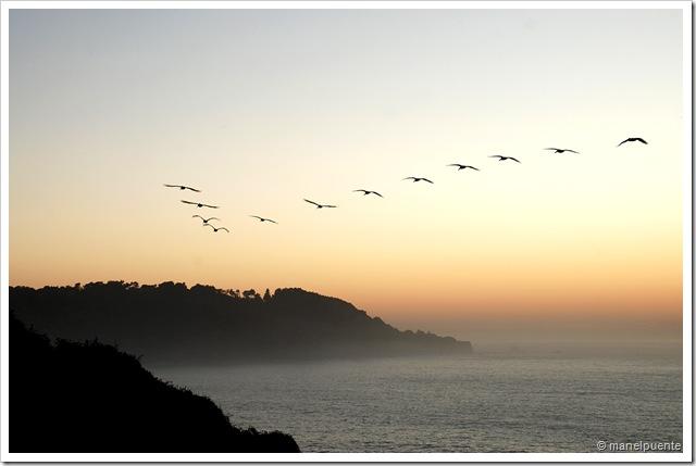 Golden Gate_09
