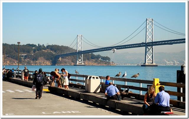 Oakland Bay Bridge_2