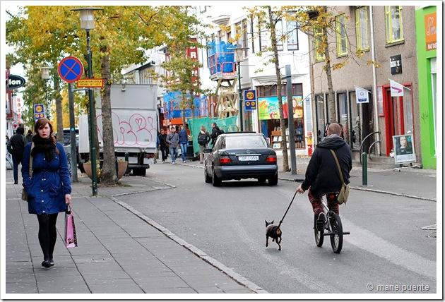 Carrer de Laugavegur a Reykjavik