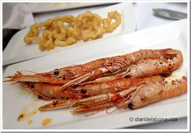 canladis_07_calamarsicigales