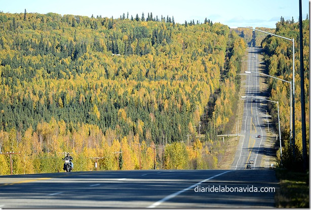 06_alaska_carretera