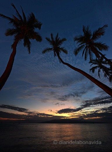 Atardecer en el pueblo de Lahaina. Isla de Maui