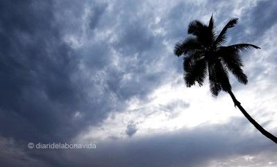 HAWAI_0770_DBV