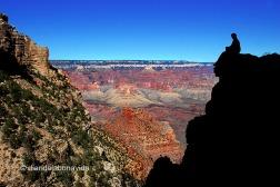 Contemplando el maravilloso Grand Canyon