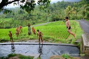 indonesia_3297