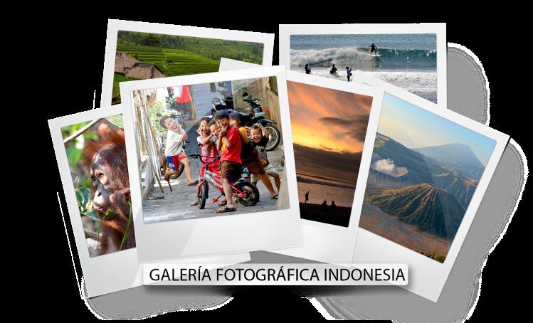 polaroids indonesia