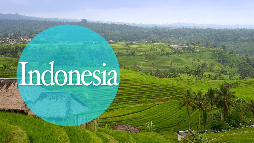 Ruta Indonesia