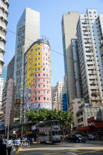 hong kong colors-4